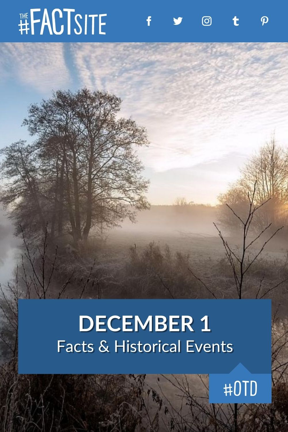 Facts & Historic Events That Happened on December 1