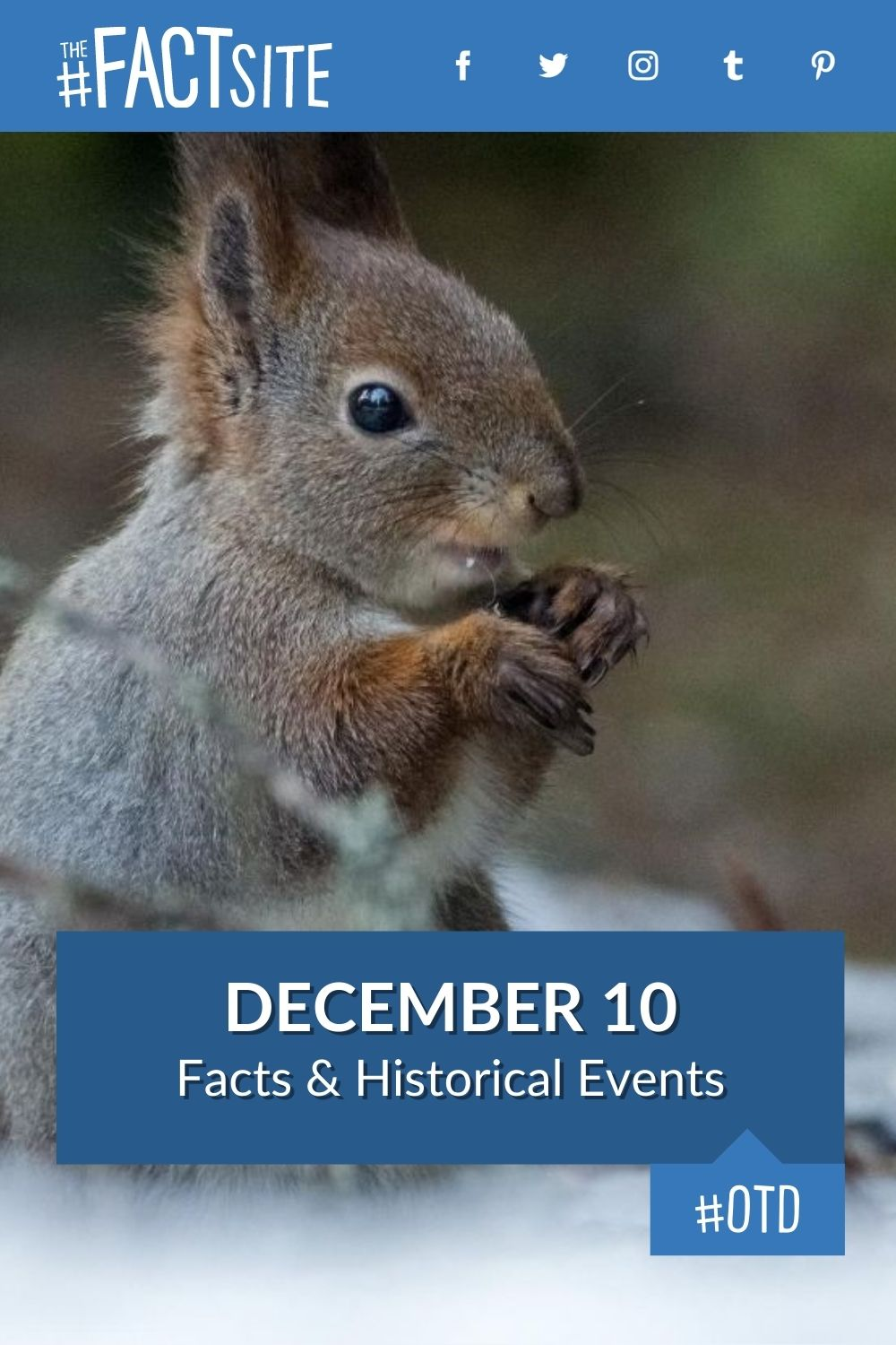 Facts & Historic Events That Happened on December 10
