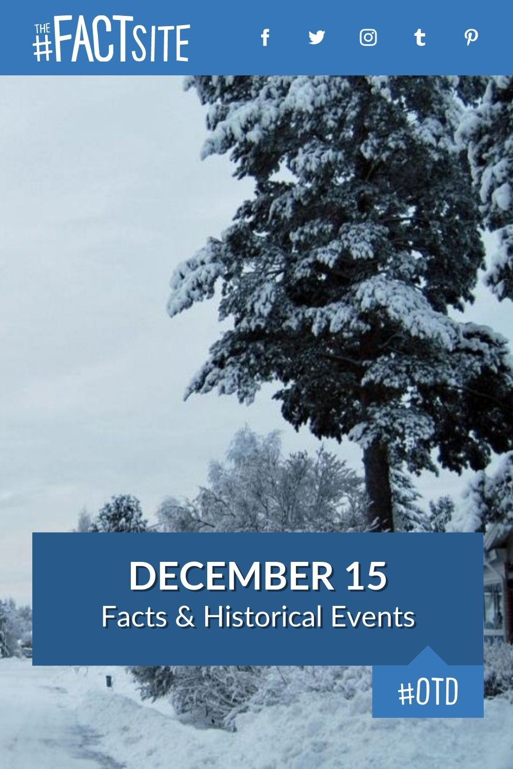 Facts & Historic Events That Happened on December 15