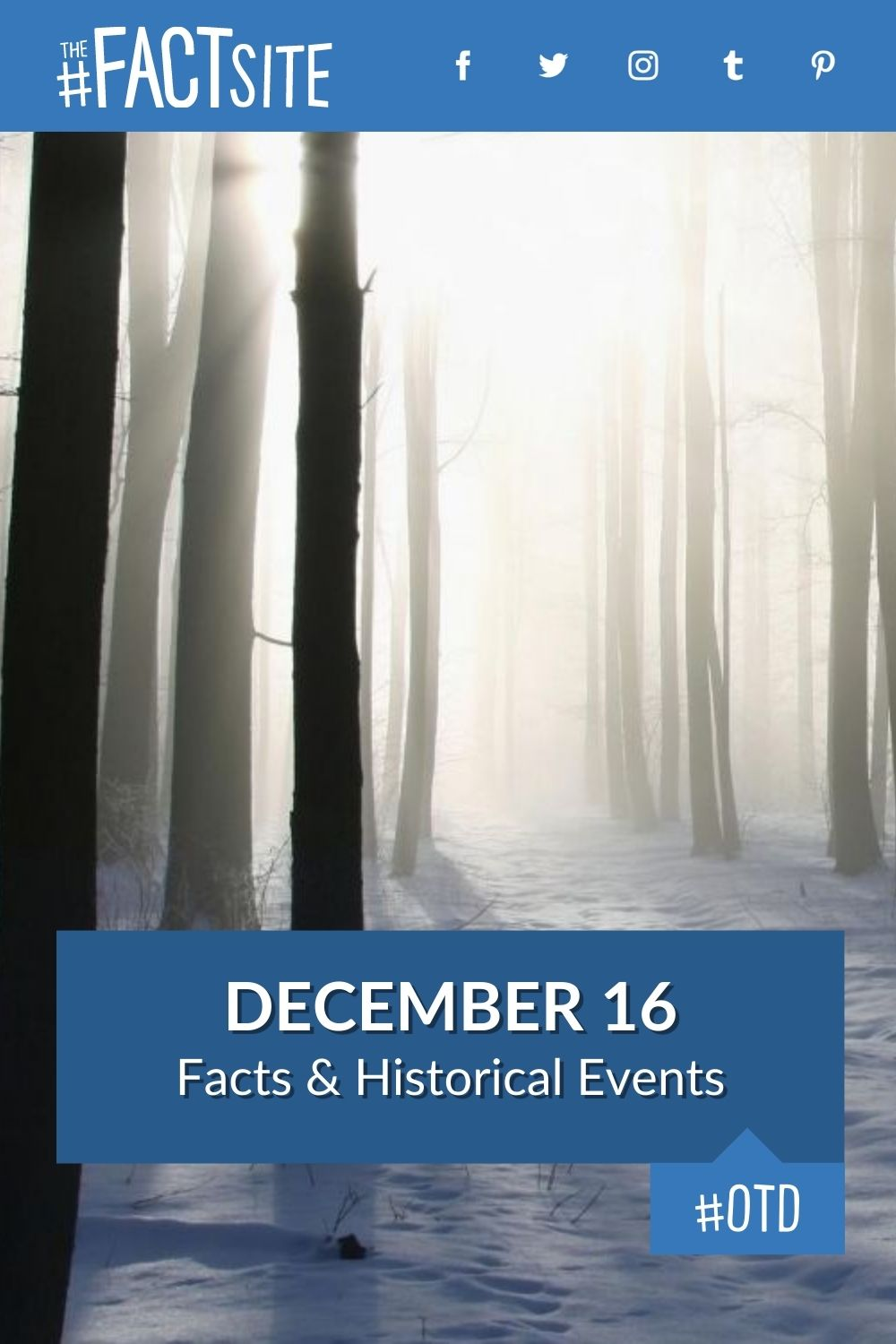 Facts & Historic Events That Happened on December 16