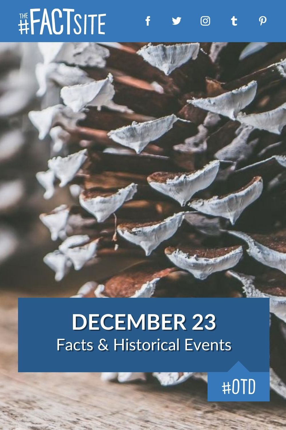 Facts & Historic Events That Happened on December 23