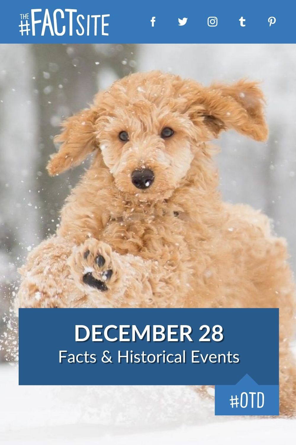 Facts & Historic Events That Happened on December 28