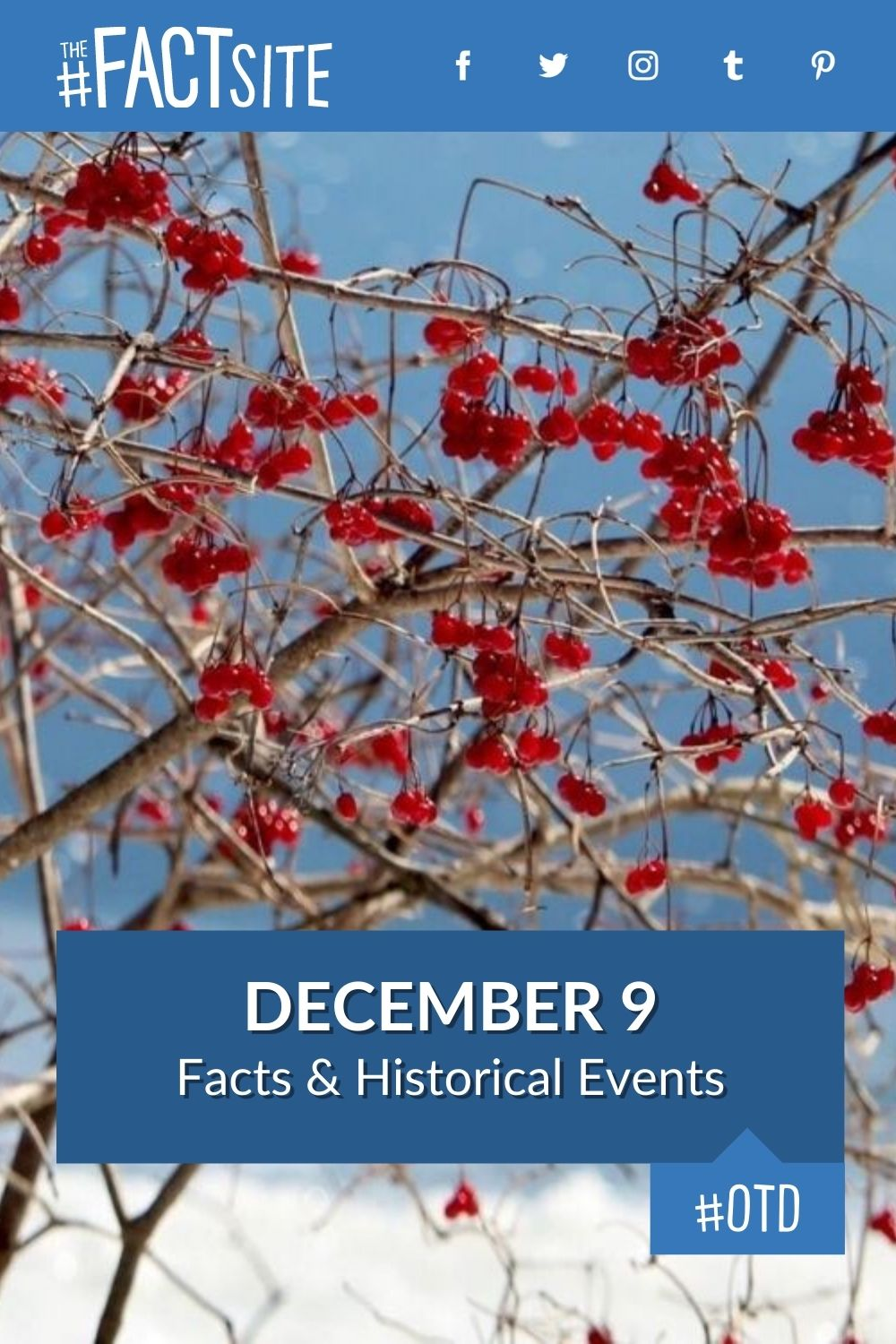 Facts & Historic Events That Happened on December 9